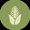 Organic Produce in Area